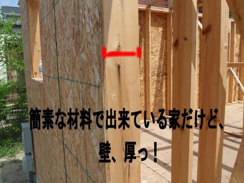 1smP6160094.jpg